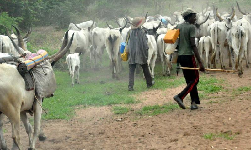 fulani-herdsmen-1_2021-07-16.jpg